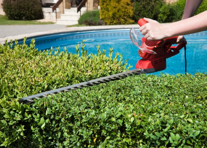 Top 10 Best Hedge Trimmer for 2018
