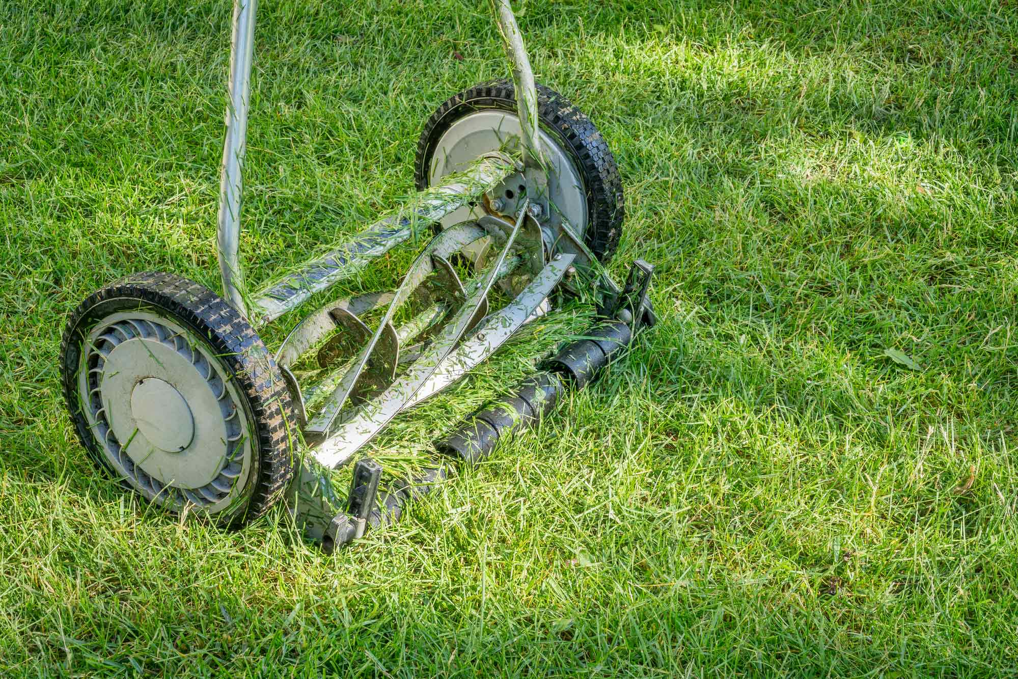 Top 11 Best Reel Mowers for 2019